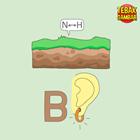 Kunci-jawaban-tebak-gambar-level-81-nomor-3